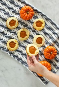 Pecan Pumpkin Pie Cookies are the perfect treat when you're craving pie and cookies! Pecan Recipes, Snack Recipes, Pumpkin Pecan Pie, Quick Snacks, Baked Goods, Cravings, Thanksgiving, Treats, Cookies