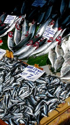 Fish Stall at the #Market, #Istanbul, #Turkey