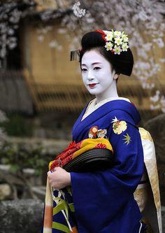 Ichifuku san as maiko# pontocho