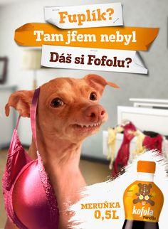 Homepage | Kofola Tuna Dog, Entertaining, My Favorite Things, Celebrities, Funny, Dogs, Animals, Google, Photos