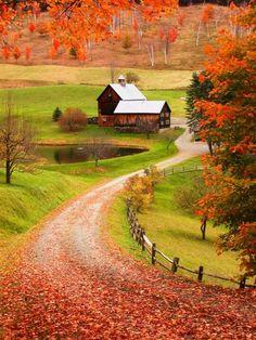 Beautiful farm in Autumn splendor.