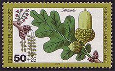 Stieleiche auf Briefmarke