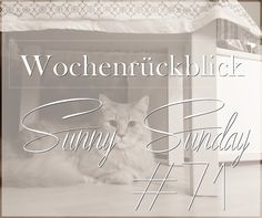 Wochenrückblick | Sunny Sunday #71