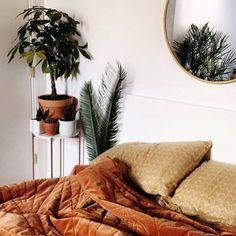 "232 Likes, 8 Comments - Domus Botanica (@domus_botanica) on Instagram: ""b e d r o o m  g o a l s ⌇⌓ ◠ ◦ why would you ever get out of bed! Impressive bedside table…"""
