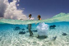 Φωτογραφίες υποβρύχιες - Η ΔΙΑΔΡΟΜΗ ®