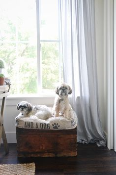 DIY super easy dog bed with storage - A must pin for all the puppy parents out there!