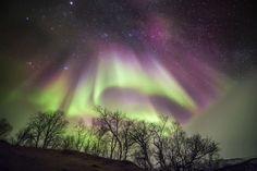 Aurora Borealis Lapponia