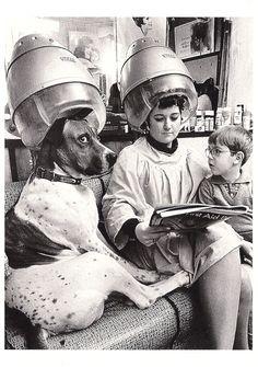 Hairdresser's Hot Dog, c. 1960.  Photograph by John Drysdale