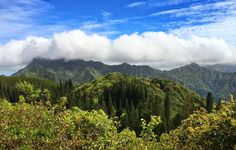 Here are the things you should know before hiking Puu Ohia Ridge. Learn more about the trail, and also on how to get there.