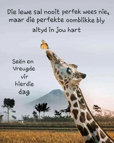 Good Morning Wishes, Morning Messages, Morning Greeting, Good Morning Inspirational Quotes, Good Morning Quotes, Lekker Dag, Bible Study Notebook, Afrikaanse Quotes, Goeie More