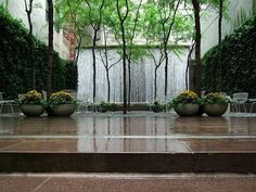 Paley Park, onetime location of the legendary Stork Club.  It's just around the corner from my work and a wonderful oasis in the skyscraper jungle of midtown Manhattan.