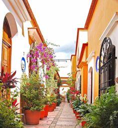 Oaxoaca, Mexico    www.liberatingdivineconsciousness.com