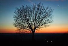 A lone tree on a hllside with the new moon - shot somewhere in  Somogy county in Hungary, while i was travelling home before Christmas. The colors after sunset and the new moon on the sky cried for a theme like this... It was a very uplifting mood.