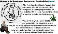"""The American Psychiatric Association has declared their unanimous vote in support of the legal protection of patients with doctors' recommendations to use the herb for medical reasons. As physicians, we cannot abide our patients being subject to arrest and jail for using a physician recommended treatment that clearly relieves suffering for many who are not helped by conventional treatments. ~ Dr. Halpern American Psychiatric Association"""