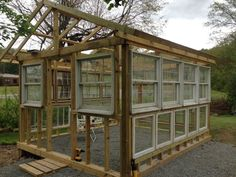 My+Hubby+Built+a+Greenhouse