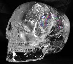 cranio de cristal