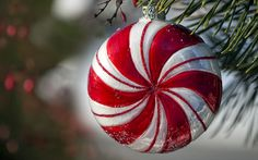 Peppermint ornament hanging in pine tree White Christmas Ornaments, Grinch Stole Christmas, Christmas Love, Christmas Candy, Christmas Pictures, All Things Christmas, Christmas Holidays, Christmas Bulbs, Christmas Decorations