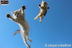 http://www.lucylab.org/il-corpo-creativo-magus-bergamo/