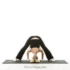 60 best yoga poses sanskrit  english images  yoga poses