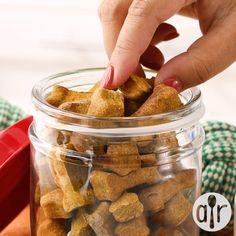 Peanut Butter and Pumpkin Dog Treats - The Best Dog Safe Cake Recipes for Your Pets Dog Cake Recipes, Easy Dog Treat Recipes, Dog Biscuit Recipes, Healthy Dog Treats, Dog Food Recipes, Soft Dog Treats, Doggie Treats, Homemade Dog Cookies, Homemade Dog Food