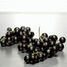 Nalewka z czarnej porzeczki na spirytusie. Co za aromat!