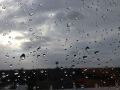 Tropical Storm Warnings...a view from my office