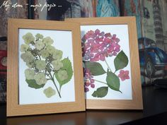 flowers, diy, picture, hydrangea