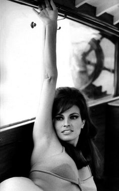 Raquel Welch, 60s...quintessential beauty.