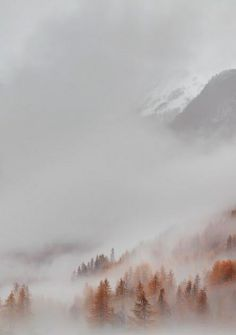 Photography ideas and inspiration. Love this image of misty mountains. So dreamy.