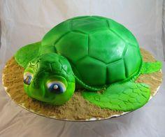 Sammy The Turtle!