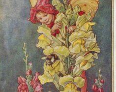 Flower Fairies: De LAVENDEL FAIRY Vintage door GailsVintagePrints