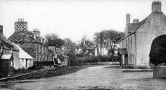 Old Photograph Kildary Scotland