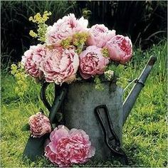 Watering Can...floral bouquet.
