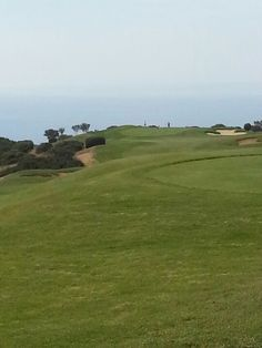 What a view from the tee