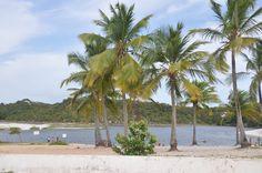 Lagoa do Abaeté - Salvador BA