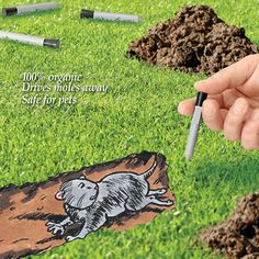 Organic Gopher & Mole Repellent Capsules
