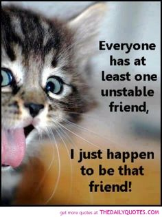 funny sayings with cats | motivational love life quotes sayings poems poetry pic picture photo ...
