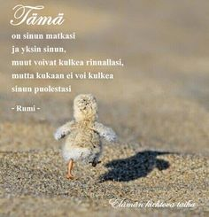 Erilaisen mummin uusi elämä. Naurua, kyyneliä, kuvia, runoja. Carpe Diem Quotes, Rumi Quotes, Motivational Words, Inspirational Quotes, Finnish Words, Strong Words, Truth Of Life, Sad Love Quotes, Beautiful Mind