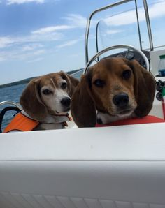 We're Boating!