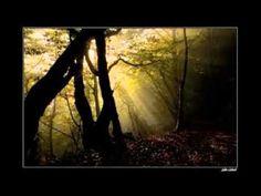 Nachklang an eine Vision Christina Weidmann - YouTube