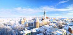 Tallin Winter