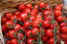Sweet cherry tomatoes , delicious as a mono meal, as a side with a meal or in salad
