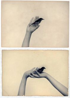 Masao Yamamoto, Japan (b.1957)_ In his delicate black-and-white photographs, Masao Yamamoto tries to capture the harmonious details of life that most of us miss. He gained initial renown for his multi-part installations consisting of tea-stained, torn, and creased prints that, through their evocation of antiquity, encourage reflection on memory and the passage of time.