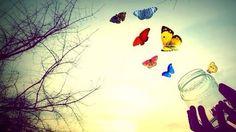 Resultado de imagem para liberdade borboleta