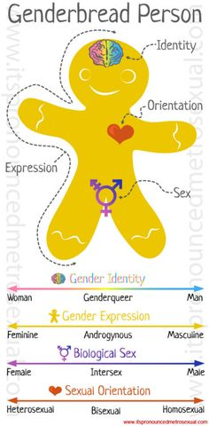 This picture shows the difference between gender expression, gender identity, biological sex, and sexual orientation. Just because someone is born with specific sex organs, that doesn't mean that his or her brain, heart, or certain stylistic choices will reflect those organs.