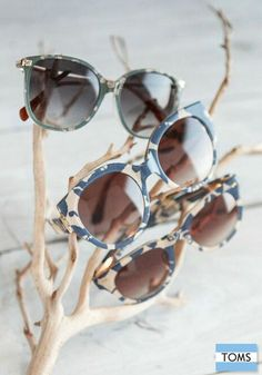 TOMS Eyewear has something for you this fall.
