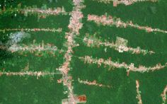 Foresta Amazzonica, un drone per scoprire civiltà nascoste