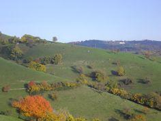 Autunno in Lessinia Ottobre 2015