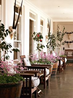 A long, narrow porch can still very much be long on style. Lining everything up against the wall, from chairs to flower-filled planters to side tables for holding those summertime Moscow mules, gives you plenty of seating and also runway for foot traffic. Stylistically this works for mismatched chairs, as long as they're in the same color palette, as well as it does for a set of matching seats. -- One Kings Lane
