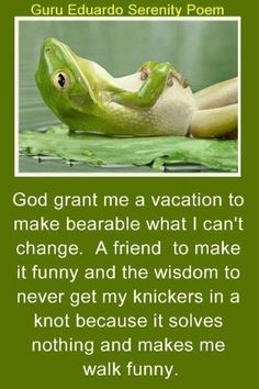 The new *improved* serenity prayer. God grant me a vacation to make bearable what I can't change. A friend to make it funny and the wisdom to never get my knickers in a knot b/c it solves nothing and makes me walk funny. Now Quotes, Great Quotes, Quotes To Live By, Funny Quotes, Inspirational Quotes, Motivational, Awesome Quotes, Humour Quotes, Life Quotes